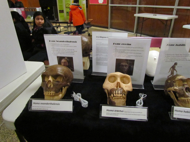 EWMMS Holds Science Fair