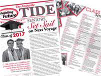 The Amityville Tide: Summer 2017 Edition image